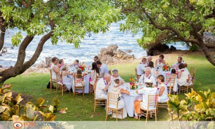 Maui Morning Wedding at the Kukahiko Estate