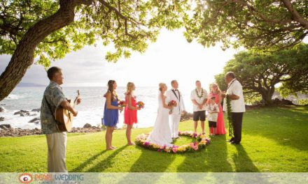 Intimate Beachfront Ceremony at Kukahiko Estate
