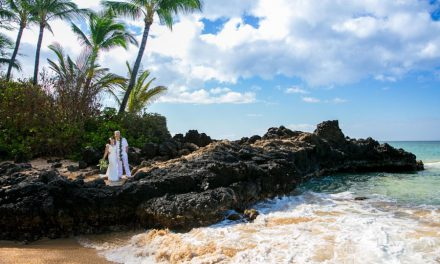 Why You Should Elope on Maui